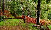 Randonnée Marche LONGPONT - en forêt de Retz_28_Longpont_Cabaret_A - Photo 149