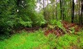 Randonnée Marche LONGPONT - en forêt de Retz_28_Longpont_Cabaret_A - Photo 2