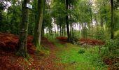 Randonnée Marche LONGPONT - en forêt de Retz_28_Longpont_Cabaret_A - Photo 156