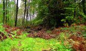 Randonnée Marche LONGPONT - en forêt de Retz_28_Longpont_Cabaret_A - Photo 3