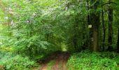 Randonnée Marche LONGPONT - en forêt de Retz_28_Longpont_Cabaret_A - Photo 100