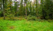 Randonnée Marche LONGPONT - en forêt de Retz_28_Longpont_Cabaret_A - Photo 85