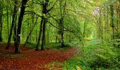 Randonnée Marche LONGPONT - en forêt de Retz_28_Longpont_Cabaret_A - Photo 145