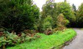 Randonnée Marche LONGPONT - en forêt de Retz_28_Longpont_Cabaret_A - Photo 64