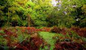 Randonnée Marche LONGPONT - en forêt de Retz_28_Longpont_Cabaret_A - Photo 176