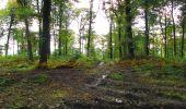 Randonnée Marche LONGPONT - en forêt de Retz_28_Longpont_Cabaret_A - Photo 36
