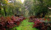 Randonnée Marche LONGPONT - en forêt de Retz_28_Longpont_Cabaret_A - Photo 175