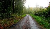 Randonnée Marche LONGPONT - en forêt de Retz_28_Longpont_Cabaret_A - Photo 151