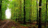 Randonnée Marche LONGPONT - en forêt de Retz_28_Longpont_Cabaret_A - Photo 163