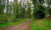 Randonnée Marche LONGPONT - en forêt de Retz_28_Longpont_Cabaret_A - Photo 109