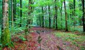 Randonnée Marche LONGPONT - en forêt de Retz_28_Longpont_Cabaret_A - Photo 192