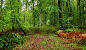 Randonnée Marche LONGPONT - en forêt de Retz_28_Longpont_Cabaret_A - Photo 161