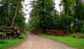 Randonnée Marche LONGPONT - en forêt de Retz_28_Longpont_Cabaret_A - Photo 158