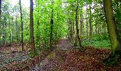 Randonnée Marche LONGPONT - en forêt de Retz_28_Longpont_Cabaret_A - Photo 166