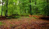 Randonnée Marche LONGPONT - en forêt de Retz_28_Longpont_Cabaret_A - Photo 165