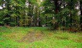 Randonnée Marche LONGPONT - en forêt de Retz_28_Longpont_Cabaret_A - Photo 35