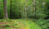 Randonnée Marche LONGPONT - en forêt de Retz_28_Longpont_Cabaret_A - Photo 95