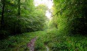 Randonnée Marche LONGPONT - en forêt de Retz_28_Longpont_Cabaret_A - Photo 98