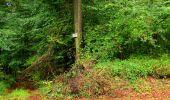 Randonnée Marche LONGPONT - en forêt de Retz_28_Longpont_Cabaret_A - Photo 154
