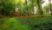 Randonnée Marche LONGPONT - en forêt de Retz_28_Longpont_Cabaret_A - Photo 177