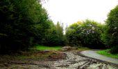 Randonnée Marche LONGPONT - en forêt de Retz_28_Longpont_Cabaret_A - Photo 65