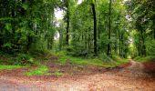Randonnée Marche LONGPONT - en forêt de Retz_28_Longpont_Cabaret_A - Photo 138