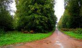Randonnée Marche LONGPONT - en forêt de Retz_28_Longpont_Cabaret_A - Photo 183