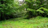 Randonnée Marche LONGPONT - en forêt de Retz_28_Longpont_Cabaret_A - Photo 101