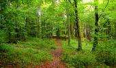 Randonnée Marche LONGPONT - en forêt de Retz_28_Longpont_Cabaret_A - Photo 169