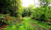 Randonnée Marche LONGPONT - en forêt de Retz_28_Longpont_Cabaret_A - Photo 69