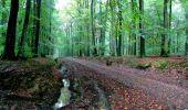 Randonnée Marche LONGPONT - en forêt de Retz_28_Longpont_Cabaret_A - Photo 180