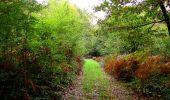 Randonnée Marche LONGPONT - en forêt de Retz_28_Longpont_Cabaret_A - Photo 63