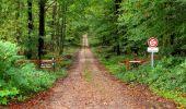 Randonnée Marche LONGPONT - en forêt de Retz_28_Longpont_Cabaret_A - Photo 49