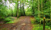 Randonnée Marche LONGPONT - en forêt de Retz_28_Longpont_Cabaret_A - Photo 77