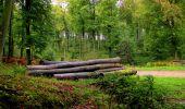 Randonnée Marche LONGPONT - en forêt de Retz_28_Longpont_Cabaret_A - Photo 159