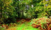 Randonnée Marche LONGPONT - en forêt de Retz_28_Longpont_Cabaret_A - Photo 171