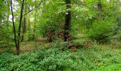 Randonnée Marche LONGPONT - en forêt de Retz_28_Longpont_Cabaret_A - Photo 94