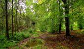 Randonnée Marche LONGPONT - en forêt de Retz_28_Longpont_Cabaret_A - Photo 164