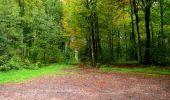Randonnée Marche LONGPONT - en forêt de Retz_28_Longpont_Cabaret_A - Photo 142