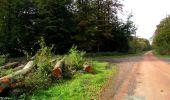 Randonnée Marche LONGPONT - en forêt de Retz_28_Longpont_Cabaret_A - Photo 33