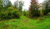 Randonnée Marche LONGPONT - en forêt de Retz_28_Longpont_Cabaret_A - Photo 86