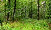 Randonnée Marche LONGPONT - en forêt de Retz_28_Longpont_Cabaret_A - Photo 135