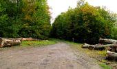 Randonnée Marche LONGPONT - en forêt de Retz_28_Longpont_Cabaret_A - Photo 52