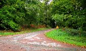 Randonnée Marche LONGPONT - en forêt de Retz_28_Longpont_Cabaret_A - Photo 39