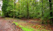 Randonnée Marche LONGPONT - en forêt de Retz_28_Longpont_Cabaret_A - Photo 58