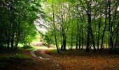 Randonnée Marche LONGPONT - en forêt de Retz_28_Longpont_Cabaret_A - Photo 66