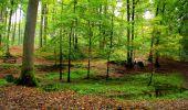 Randonnée Marche LONGPONT - en forêt de Retz_28_Longpont_Cabaret_A - Photo 76