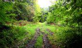 Randonnée Marche LONGPONT - en forêt de Retz_28_Longpont_Cabaret_A - Photo 4