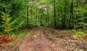 Randonnée Marche LONGPONT - en forêt de Retz_28_Longpont_Cabaret_A - Photo 60