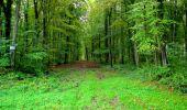 Randonnée Marche LONGPONT - en forêt de Retz_28_Longpont_Cabaret_A - Photo 189